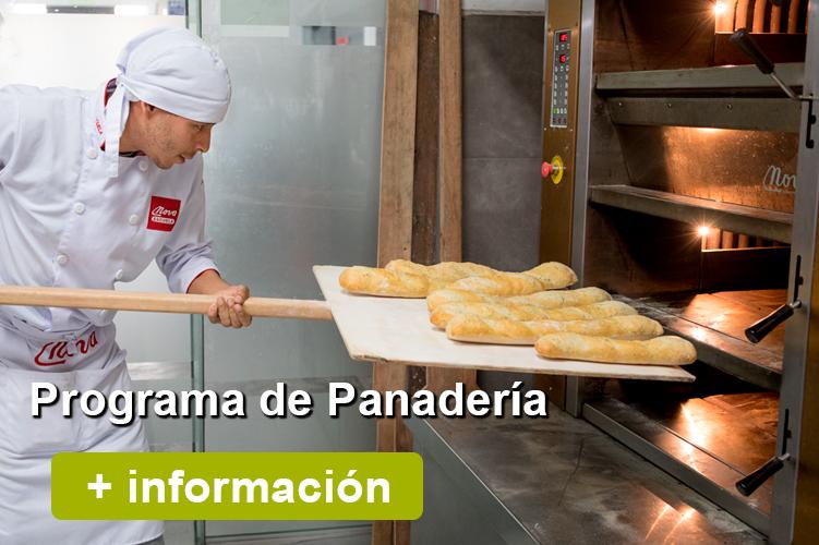 nova-escuela-boton-web-programa-panaderia
